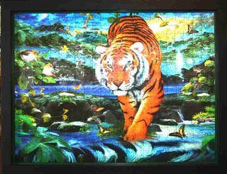 Tiger puzzle with two frames