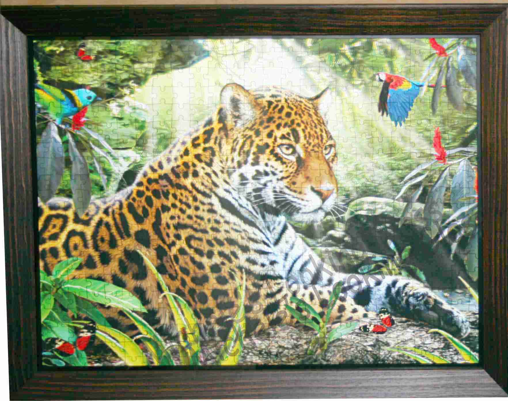 Framed 3-d puzzle with a double frame